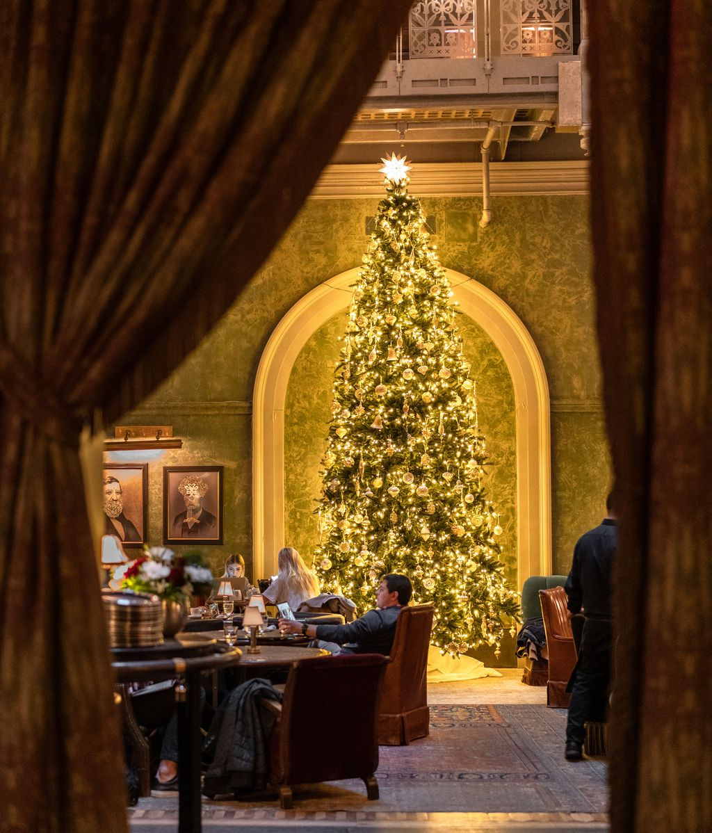 Arbol del Hotel The beekman