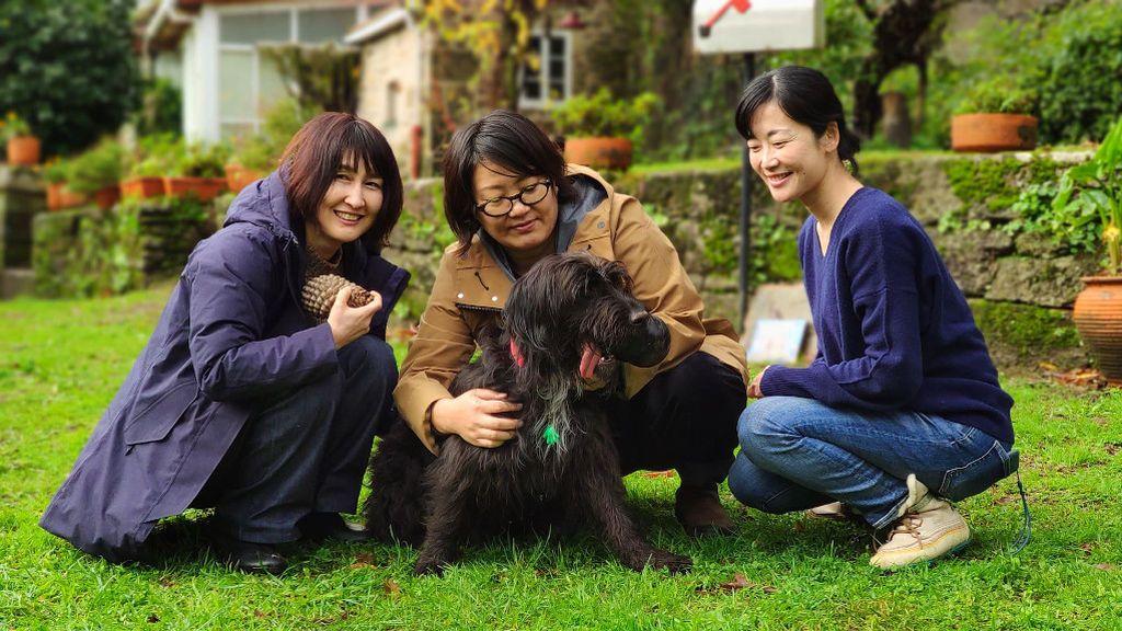 """La nueva vida de """"Michi"""": dos peregrinas adoptan a un perro abandonado en el Camino de Santiago y se lo llevan a Japón"""