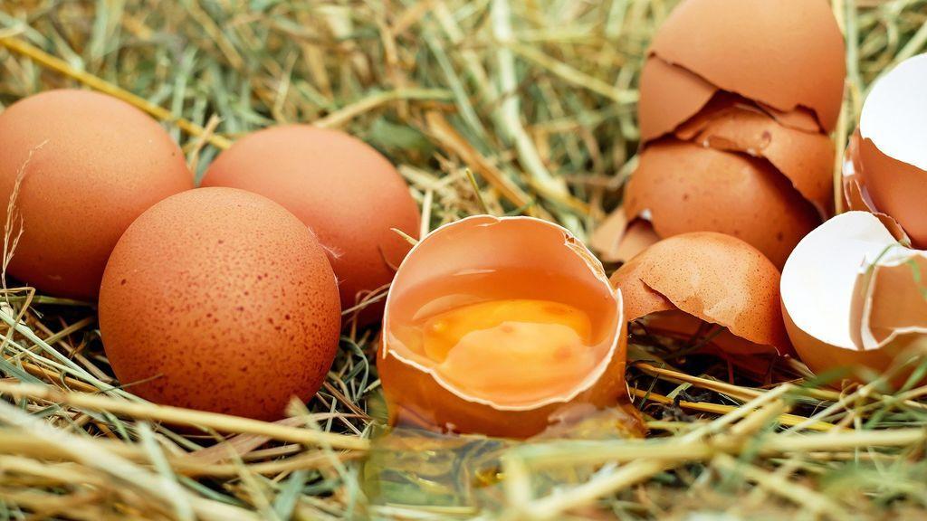Añadir claras de huevo a tu dieta puede aumentar la fertilidad masculina según un estudio