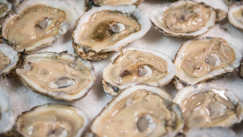 Me acabo de enterar de que las ostras están vivas cuando se comen y ya no puedo más