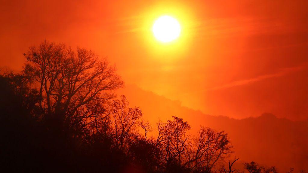 Un 2020 en la misma línea: las predicciones apuntan a un año más cálido de lo normal