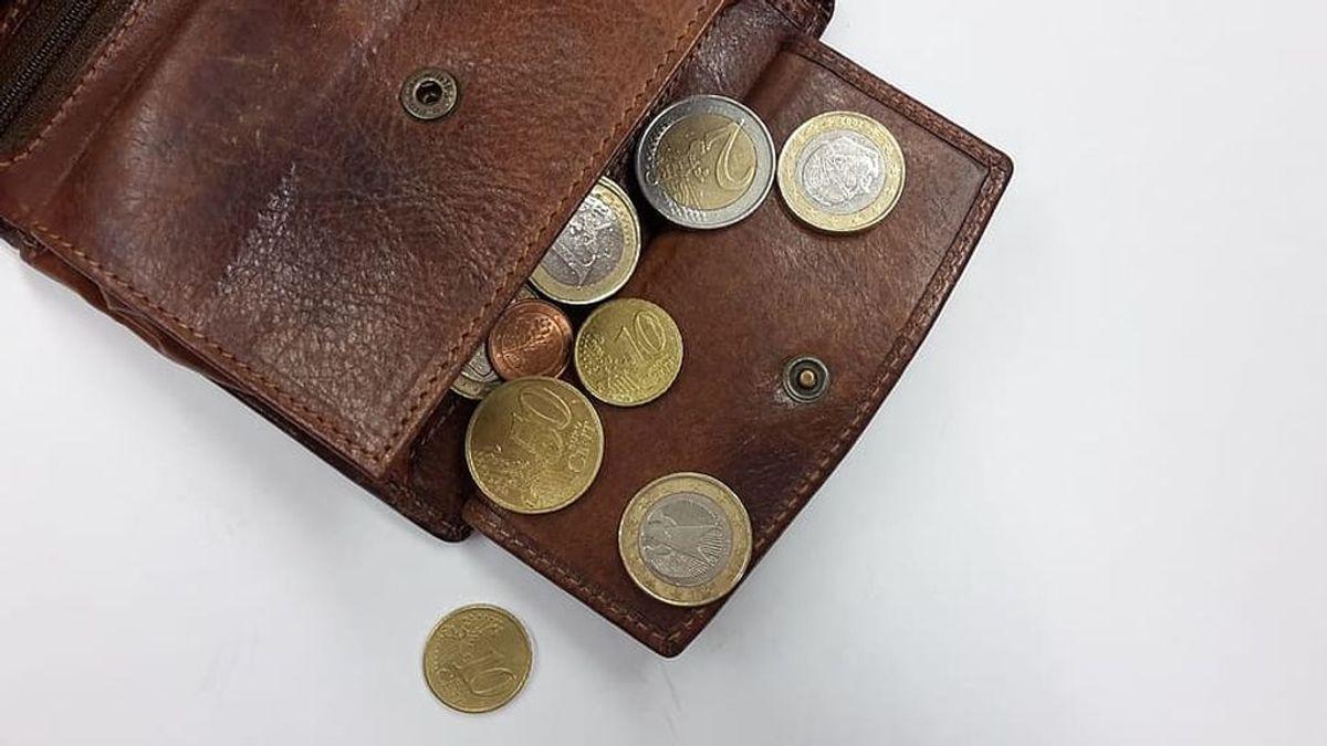 purse-coins-money-euro