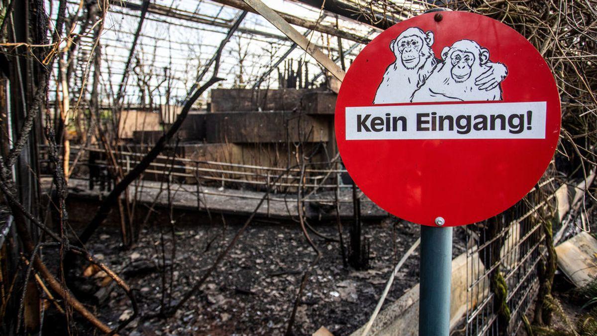 Decenas de animales mueren en un incendio en un zoo en Alemania