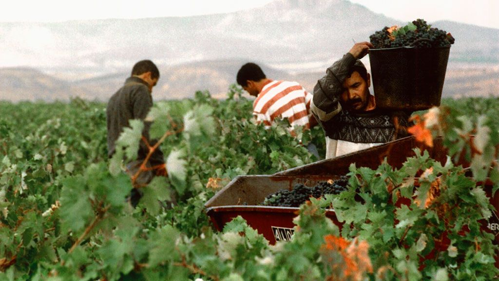 Filipinos trabajando en Soria: la creciente oferta para extranjeros en la España vaciada