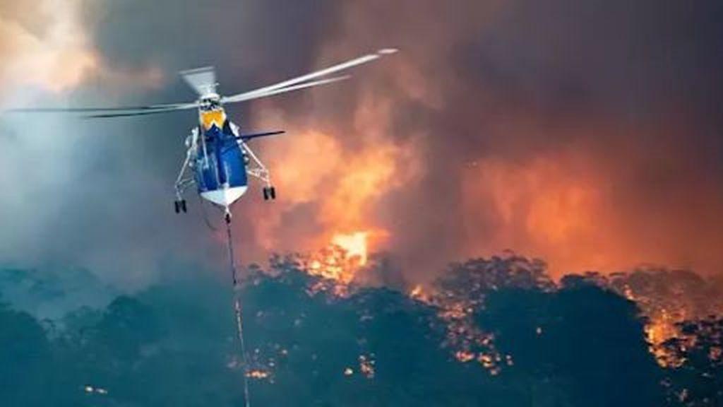 Ya son 19 los muertos por los incendios en Australia, debido a la llegada inminente de un nuevo frente cálido