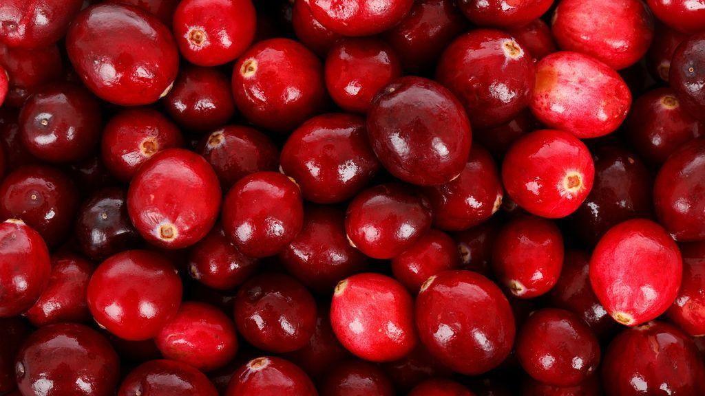 Un estudio revela que el consumo de arándano rojo puede reducir la hipertensión