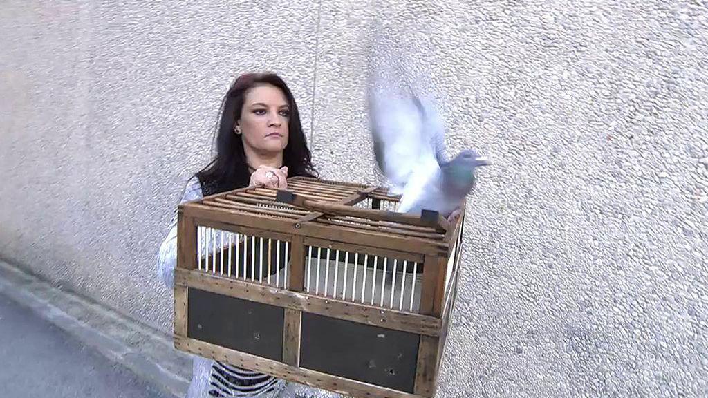 Edmundo, liberado de su jaula: la casa de María Teresa Campos