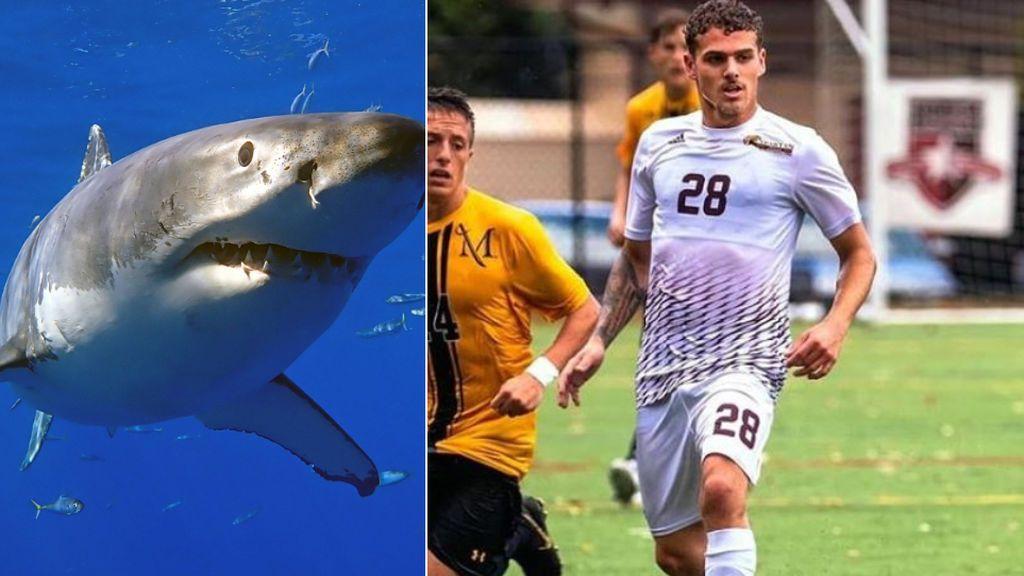 Un futbolista de 21 años aparece muerto devorado por tiburones en Australia