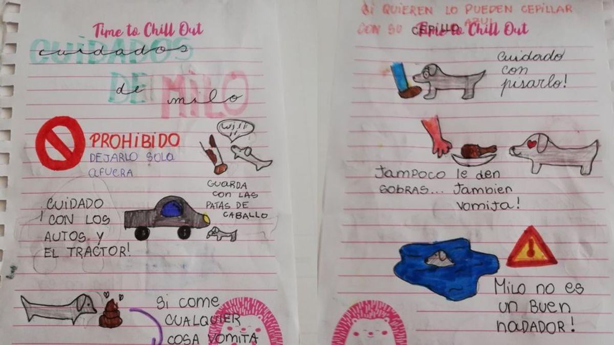 El tierno manual con instrucciones de una niña para que cuiden de su perro durante las vacaciones