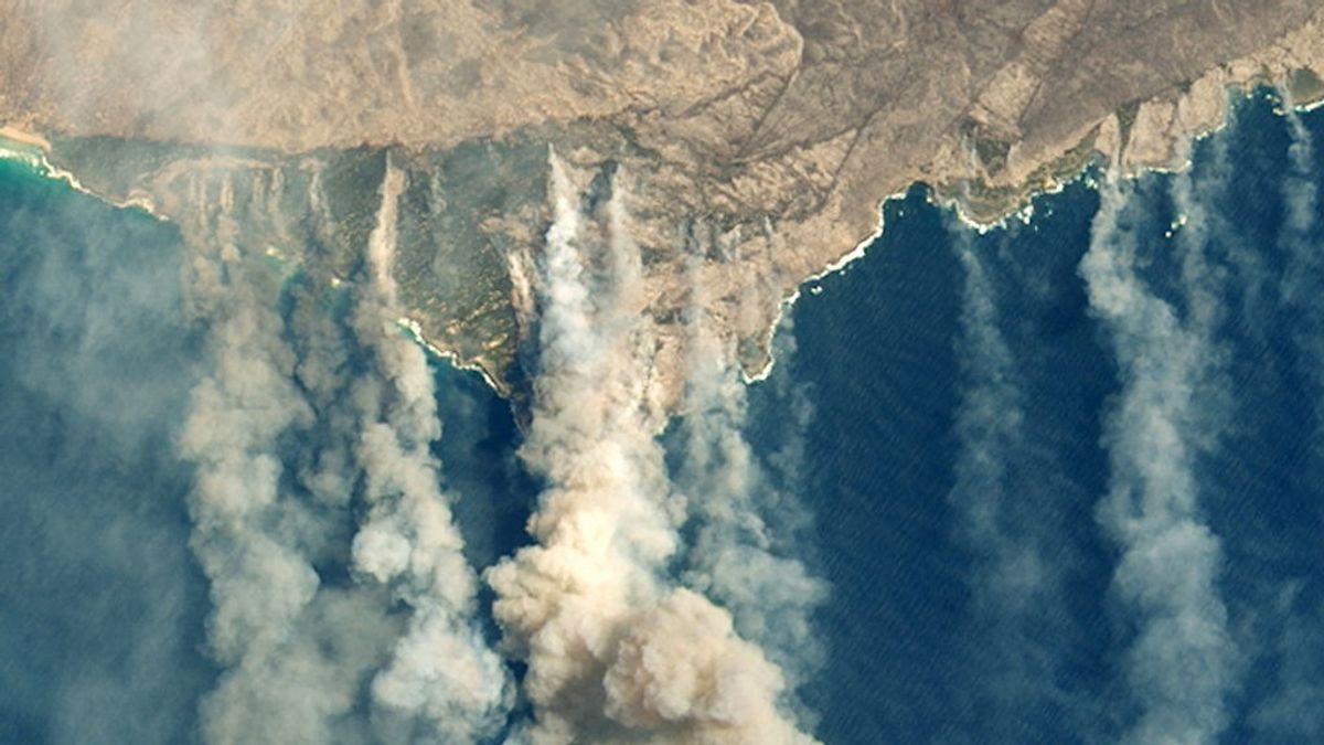 """Australia declara el """"estado de desastre"""": evacuaciones masivas en poblaciones del sudeste del país"""