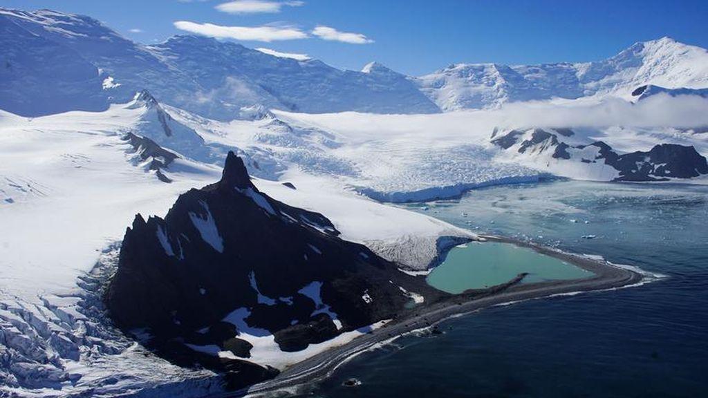 El aumento de la actividad humana y el calentamiento facilitan la llegada de especies invasoras a la Antártida