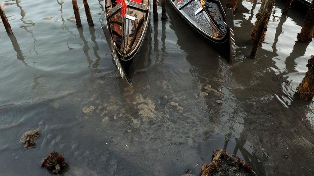 El nivel de los canales durante la marea baja