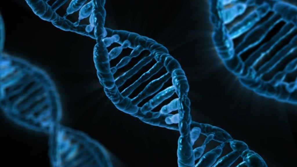 Solo 1 de cada 10 casos de cáncer son hereditarios, según experto