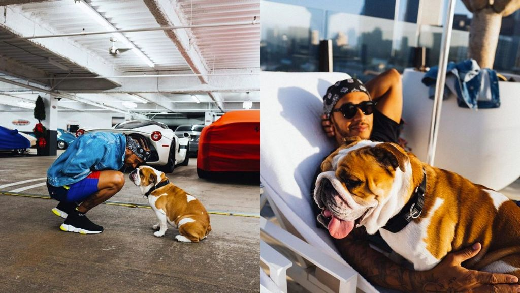 """El talento oculto del perro de Lewis Hamilton: """"Roscoe canta cuando siente la emoción"""""""