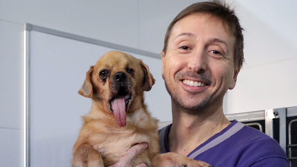 """""""Es una cuestión de concienciación social"""": la denuncia de un veterinario ante el abandono animal"""
