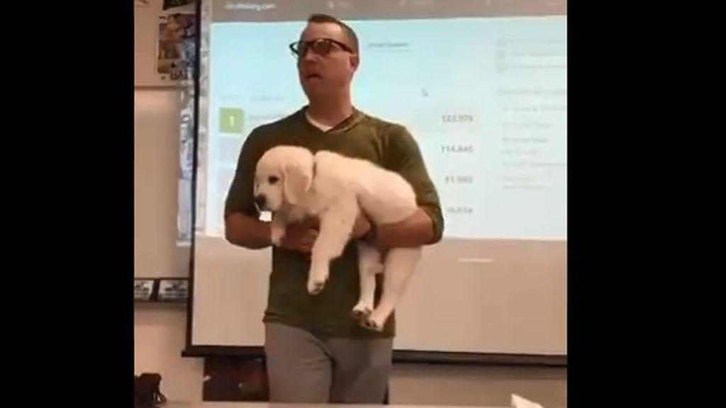 "La broma de un profesor para inspirar a sus alumnos a ganar un concurso: ""Si perdéis, mato al perro"""