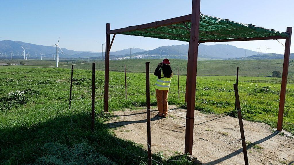 Un vigilante medioambiental en su puesto de observación