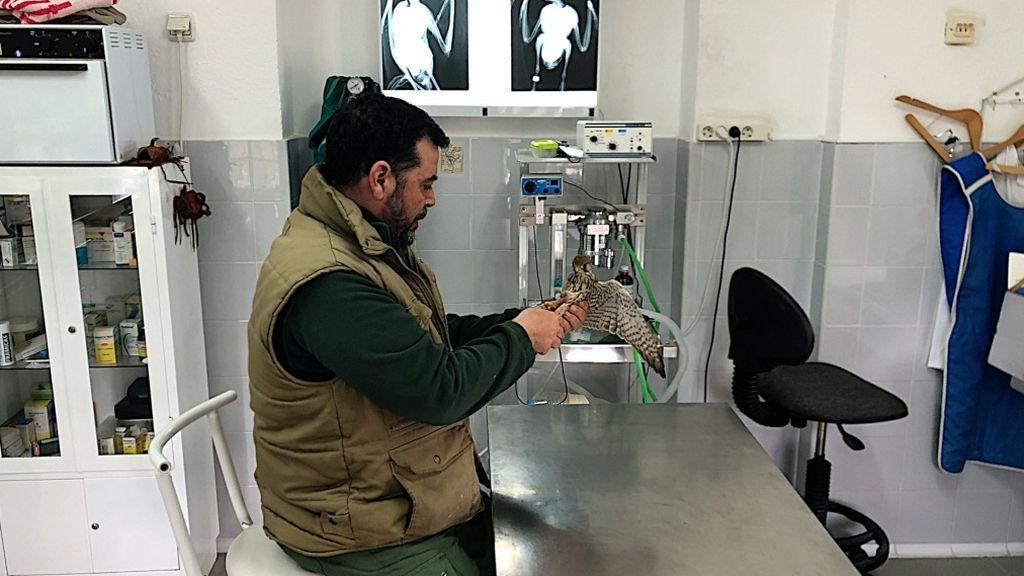 El veterinario Juan Calos Cápuz con Cinco Rojo