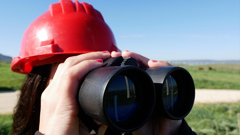 Una vigilante medioambiental observa un parque de aerogeneradores
