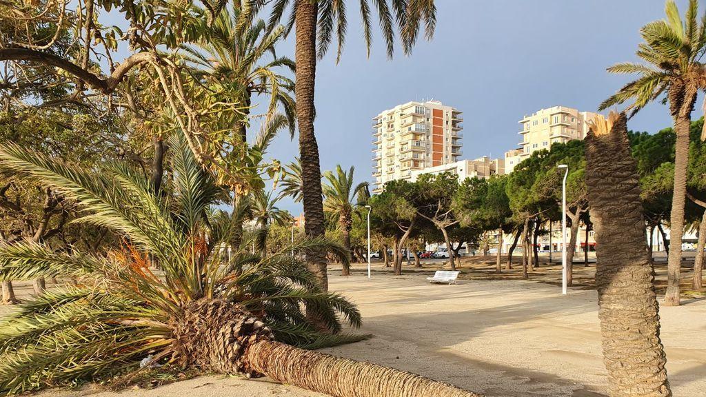 Paseo de Mataró