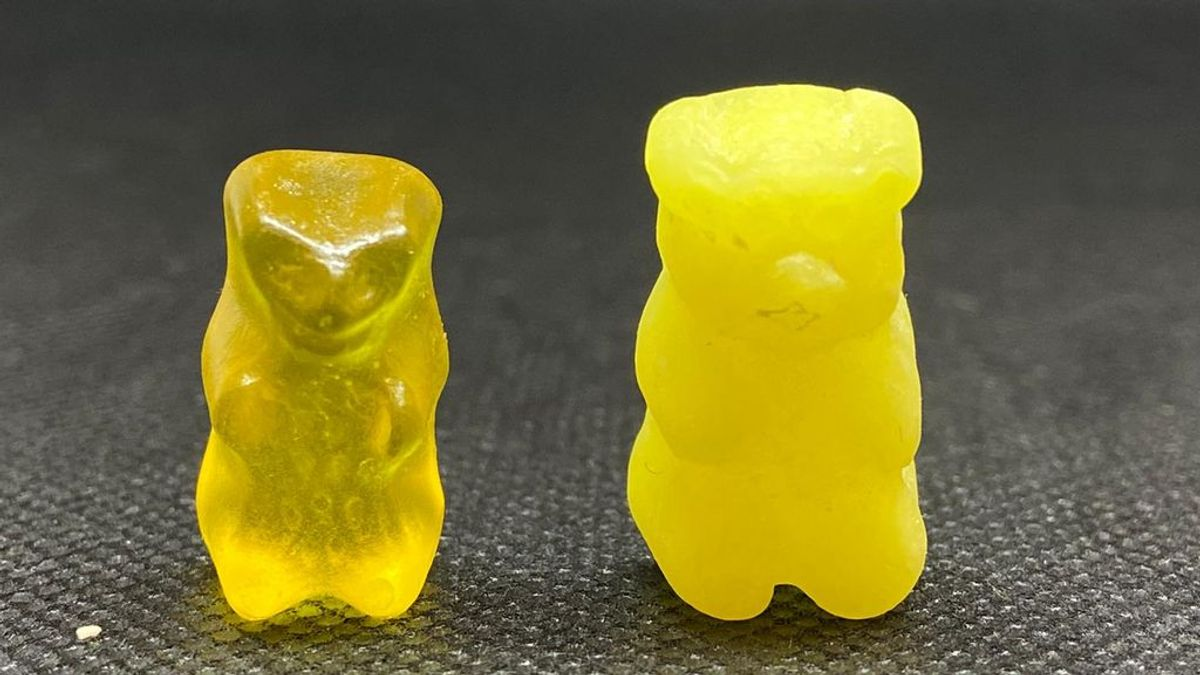 osos comestibles