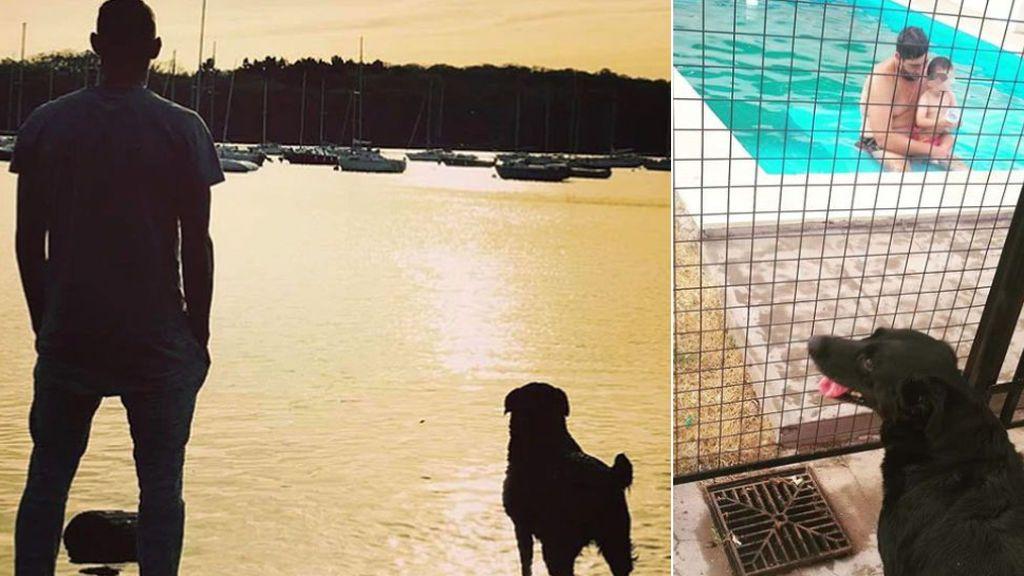 """Nala, la perra de Emiliano Sala, no se separa del sobrino pequeño del futbolista un año después de su fallecimiento: """"Negrita hermosa"""""""