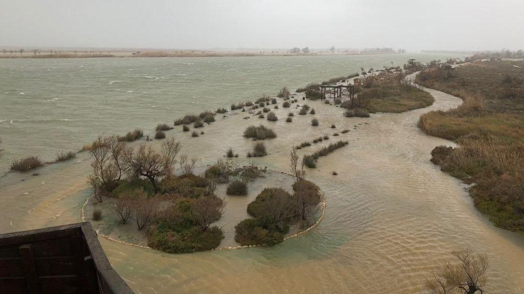 EuropaPress_2602575_Inundaciones_en_la_zona_del_delta_del_Ebro_por_la_borrasca_'Gloria'_