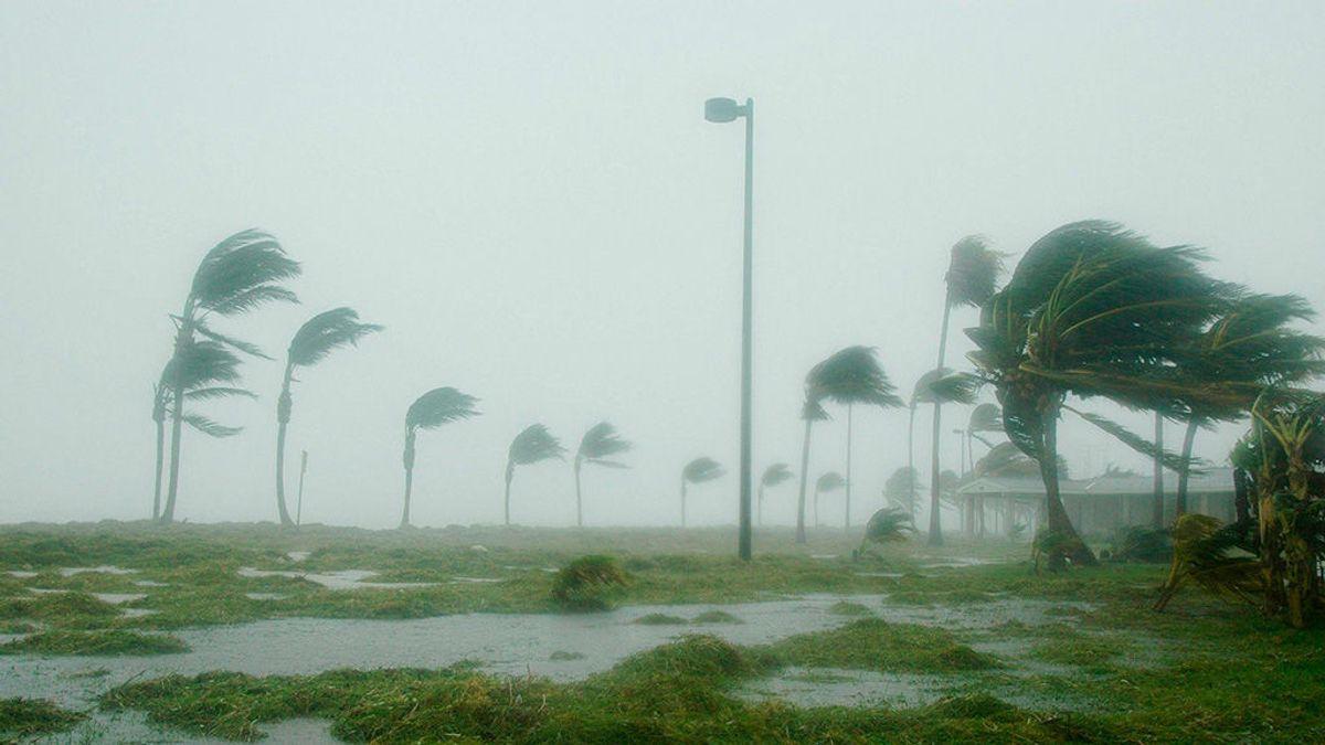 Sequías, olas de frío y huracanes: la factura por alterar el clima la pagaremos todos
