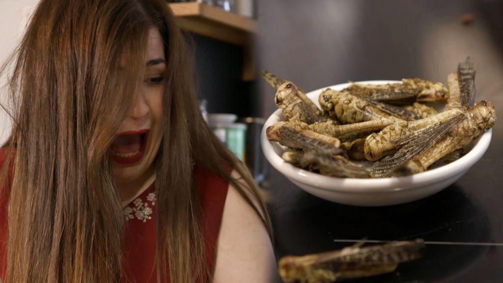 Rubén prepara un fin de fiesta con insectos deshidratados