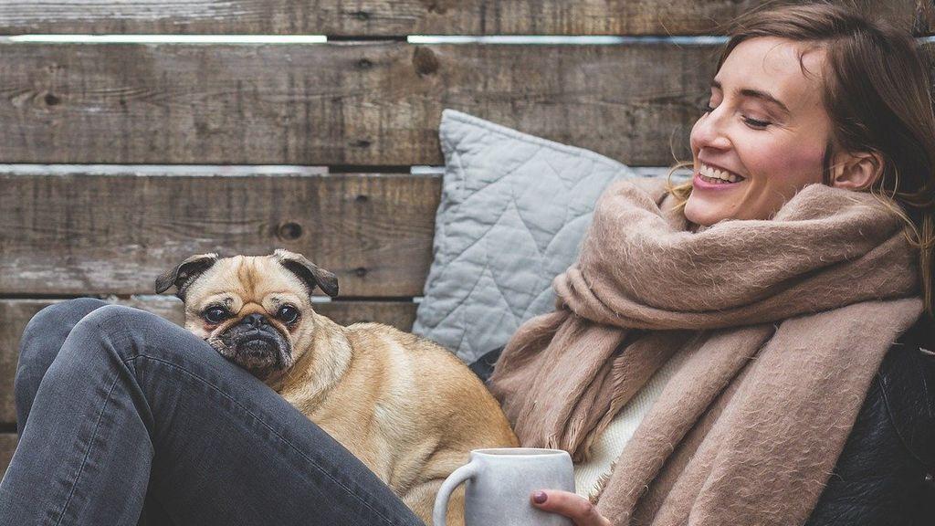 Qué infecciones transmite tu mascota y cómo evitarlas