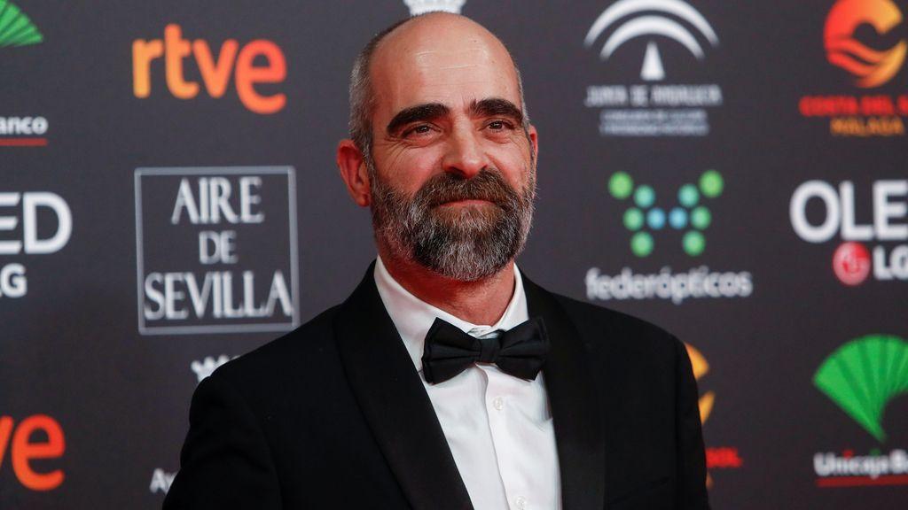 Luis Tosar en la alfombra roja de los Premios Goya 2020