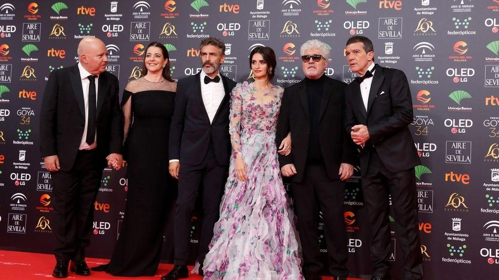 El equipo de la película 'Dolor y Gloria' en la alfombra roja de los Premios Goya 2020