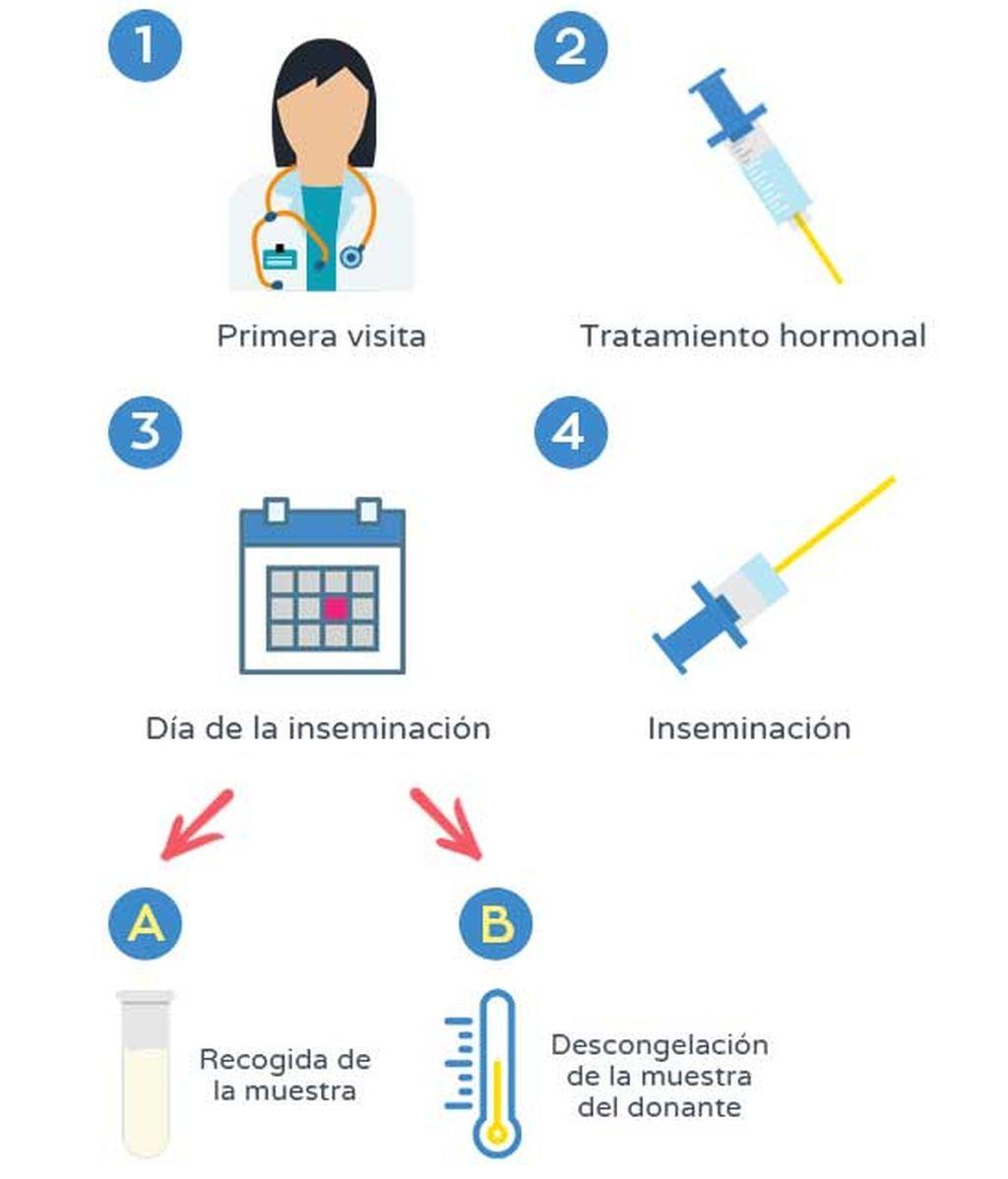Paso a paso de la inseminación artificial (IA)