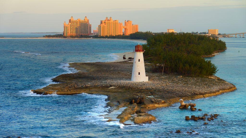 Se buscan voluntarios para vivir gratis dos meses en las Bahamas por una buena causa