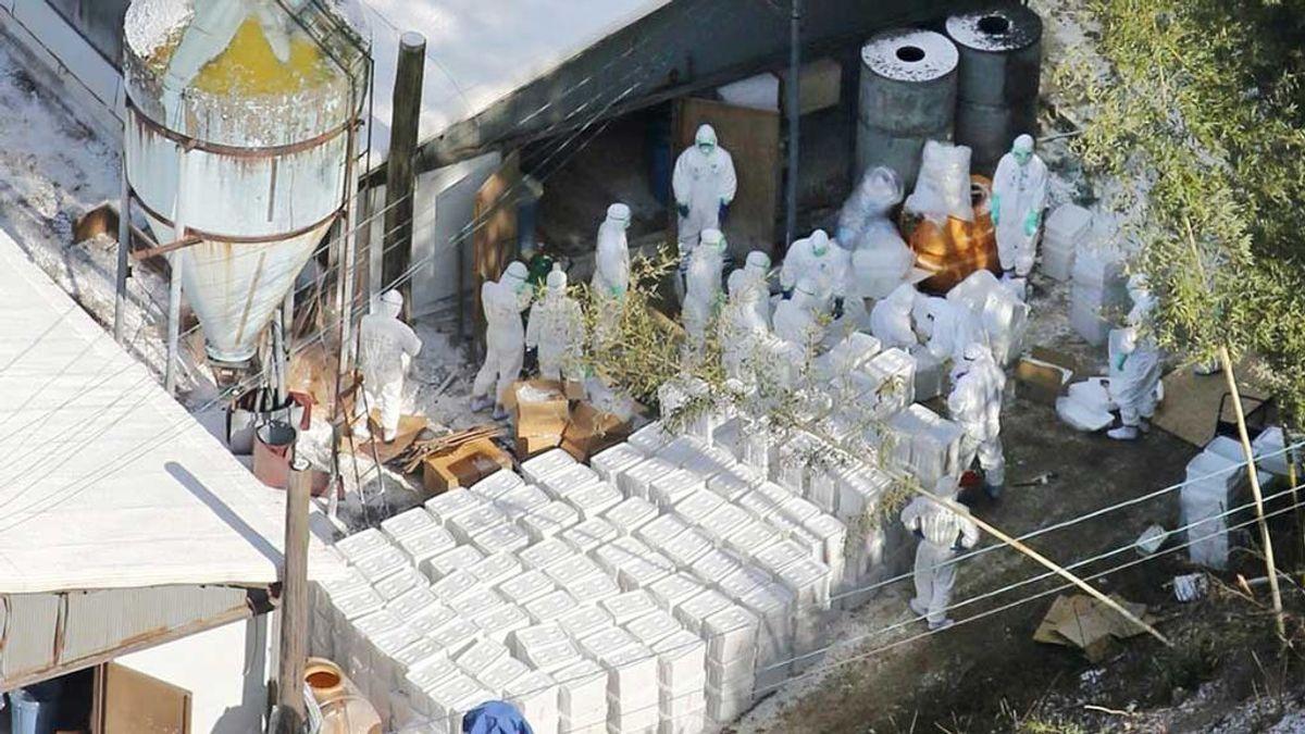 China declara un nuevo brote de gripe aviar cerca de la zona cero del coronavirus