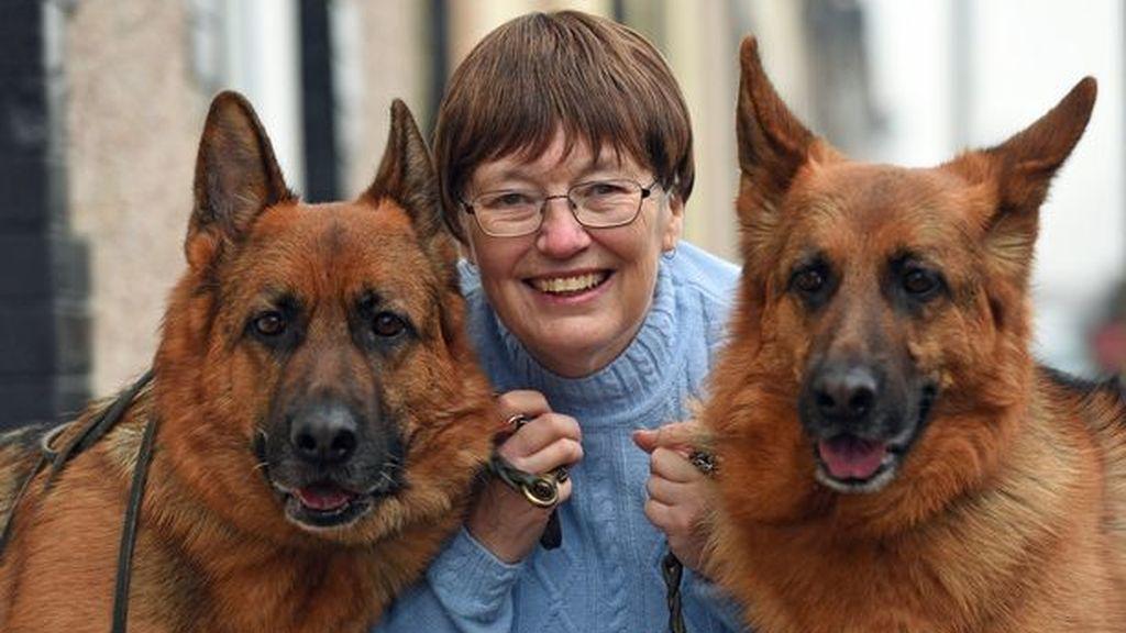 Dos perros salvan a una mujer al detectar que tenía cáncer de mama