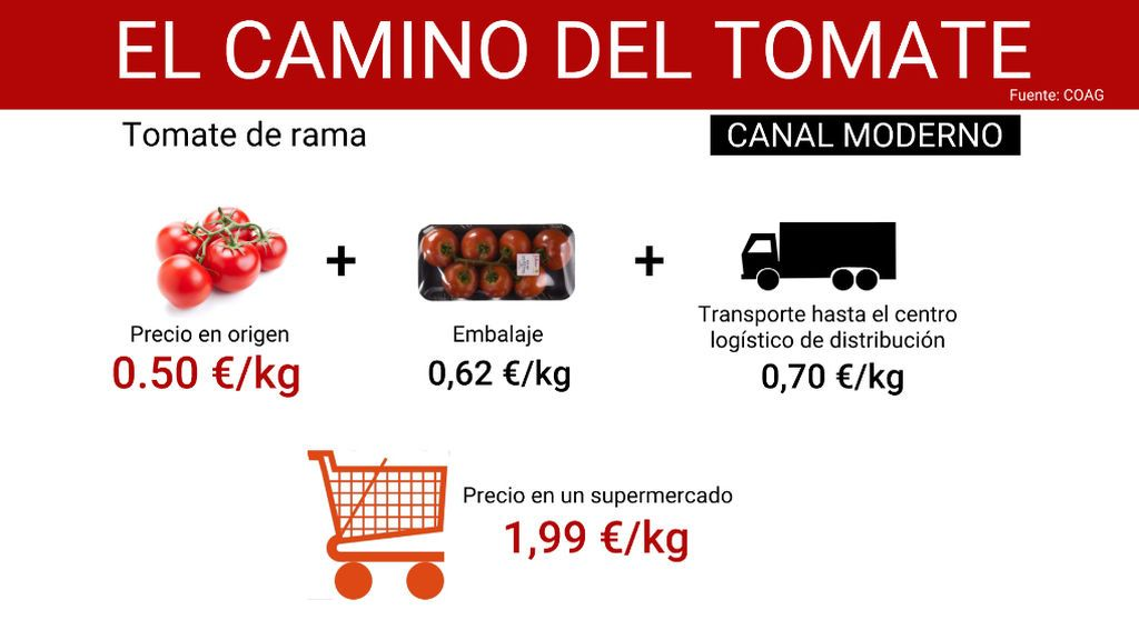 camino_tomate_2