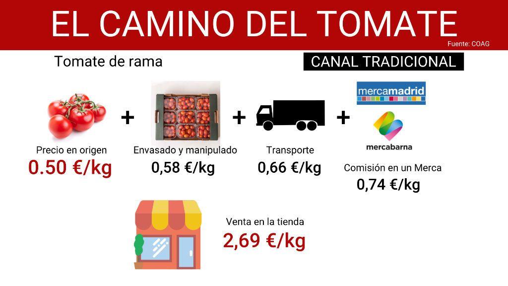 camino_tomate_1