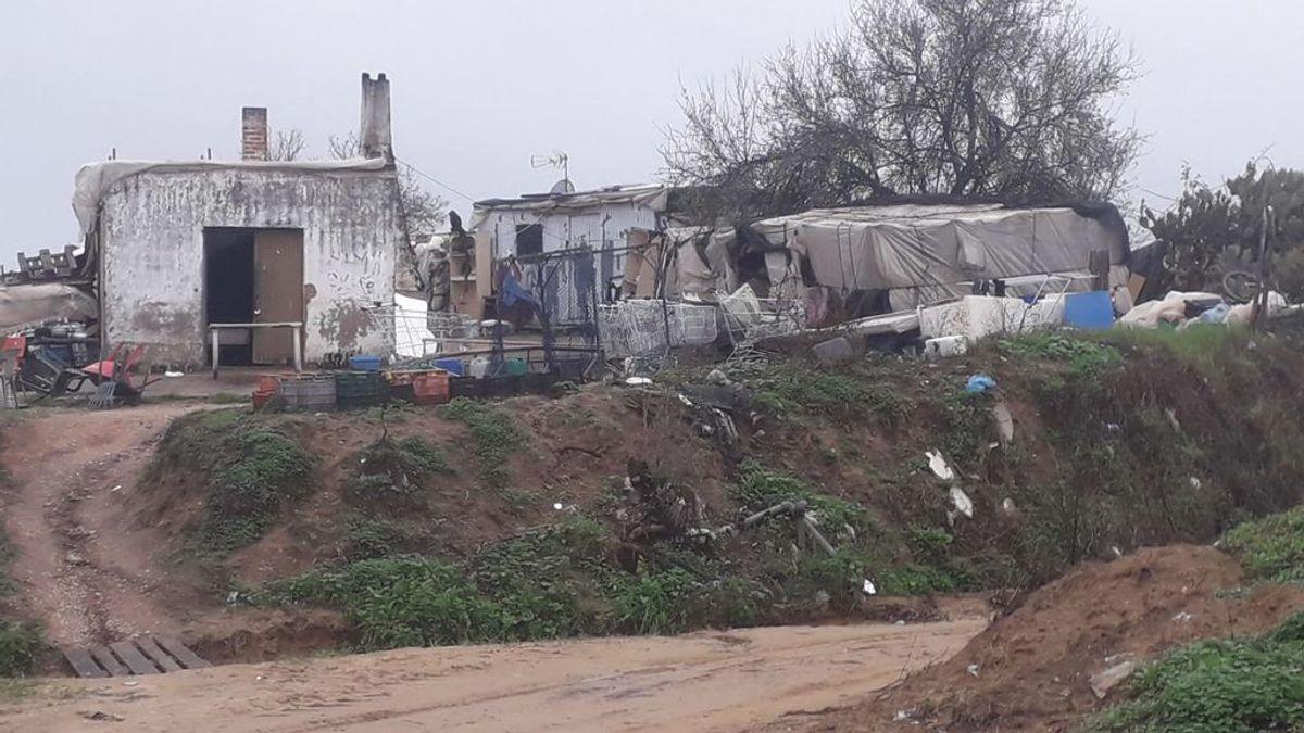 Sin luz, agua ni saneamiento, y en chabolas: muchos temporeros de Huelva malviven en plena temporada de fresa