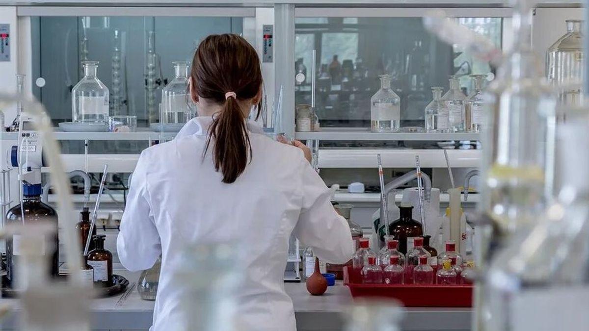 "Descubren en Brasil un virus ""misterioso"" sin genes reconocibles"