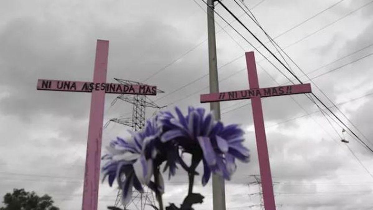 Feminicidio en México: la indignación por el asesinato de una mujer desollada y mutilada