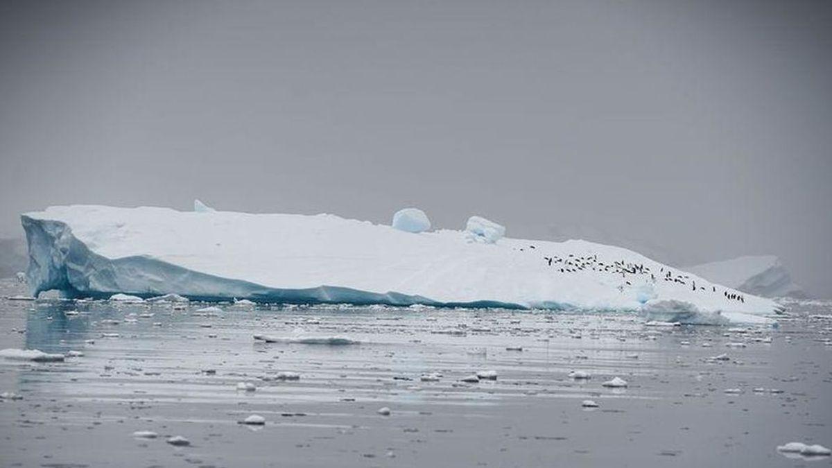 La Antártida se derrite:  su temperatura supera por primera vez los 20 grados