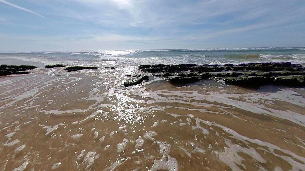 La playa del Palmar