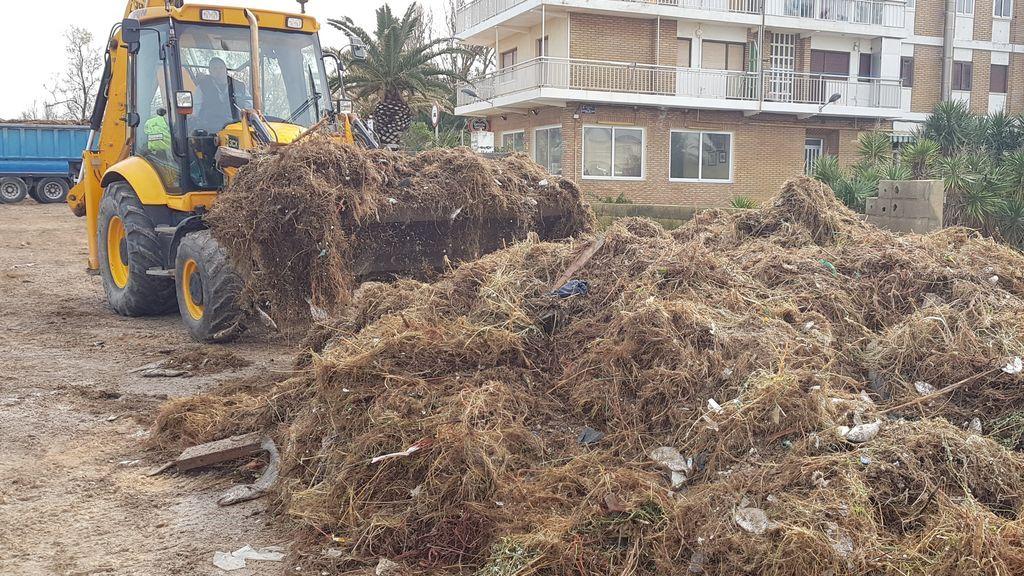 La borrasca Gloria devuelve a la costa restos humanos que podrían ser de personas desaparecidas hace meses