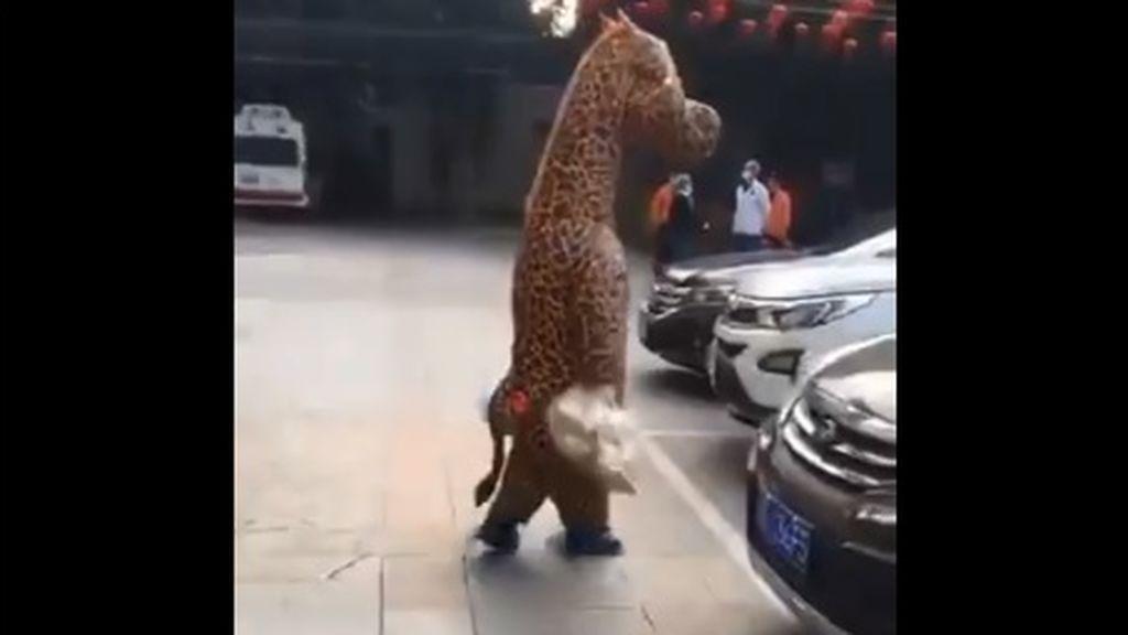 Una mujer acude a un centro de salud disfraza de jirafa ante el miedo de contagiarse por coronavirus
