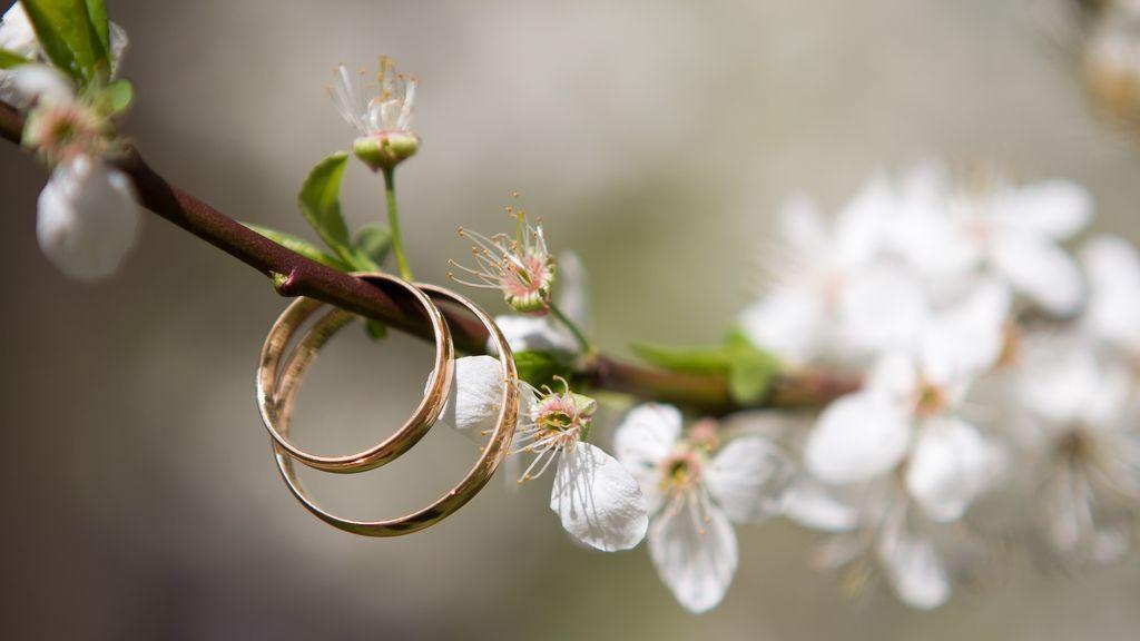 Encuentran en un bosque de Finlandia el anillo que una mujer perdió hace más de 45 años en Estados Unidos