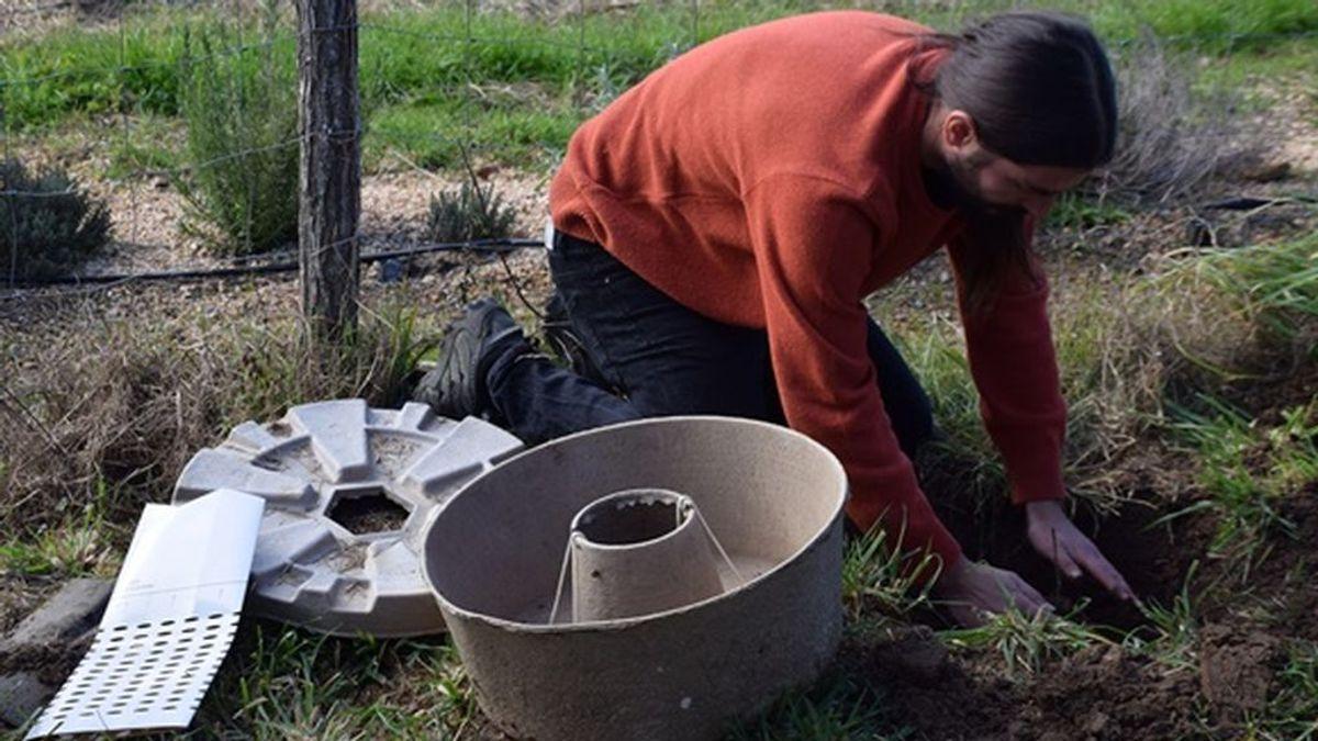 El método 'Cocoon': 'dónuts' de cartón para repoblar bosques quemados