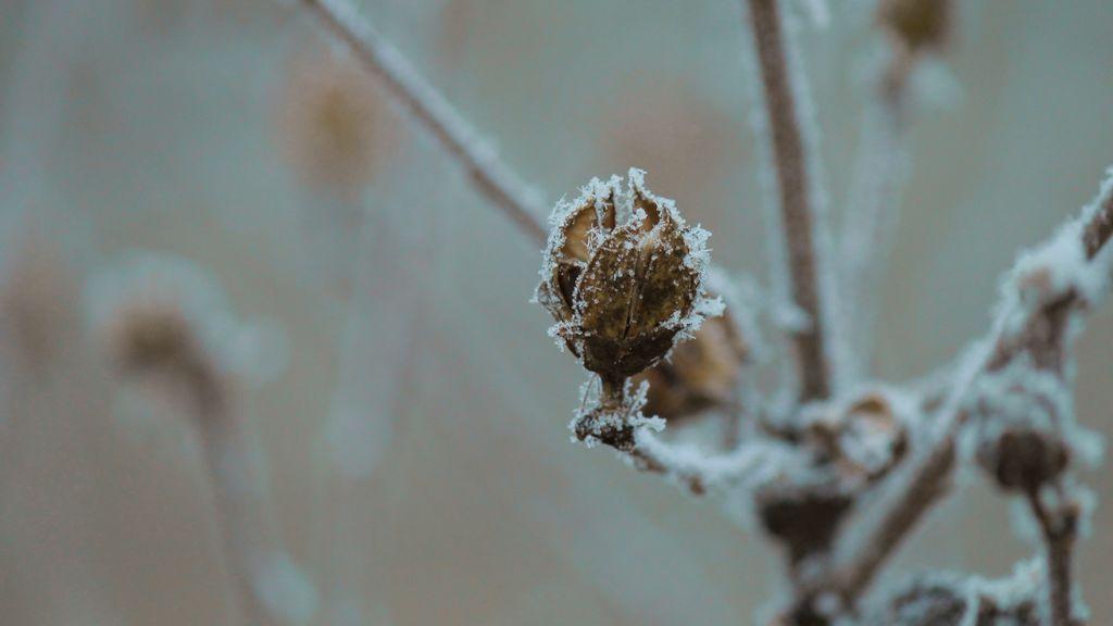 Viene un frente frío el martes: los termómetros se desploman hasta 8ºC