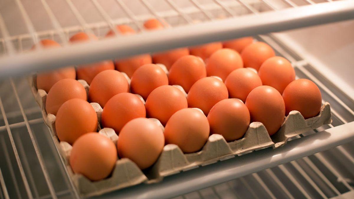 Huevos, chocolate o tomates: alimentos que a menudo van a la nevera y no deberían
