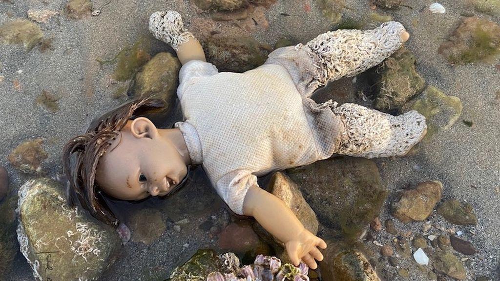 La imagen del terror del Mar Menor: 'una muñeca diabólica' con un gusano invasor sumergida en la orilla